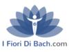 ifioridibach.com